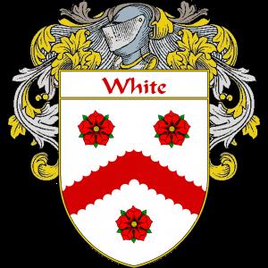 White Anglo-Saxon Family Crest